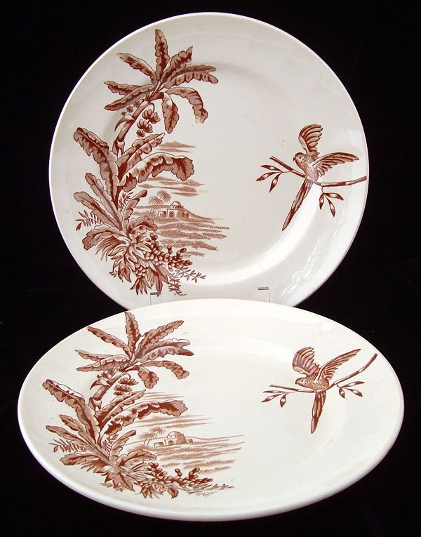 Pair Brown Transfer Plates ~ Parrot and Bananas 1880