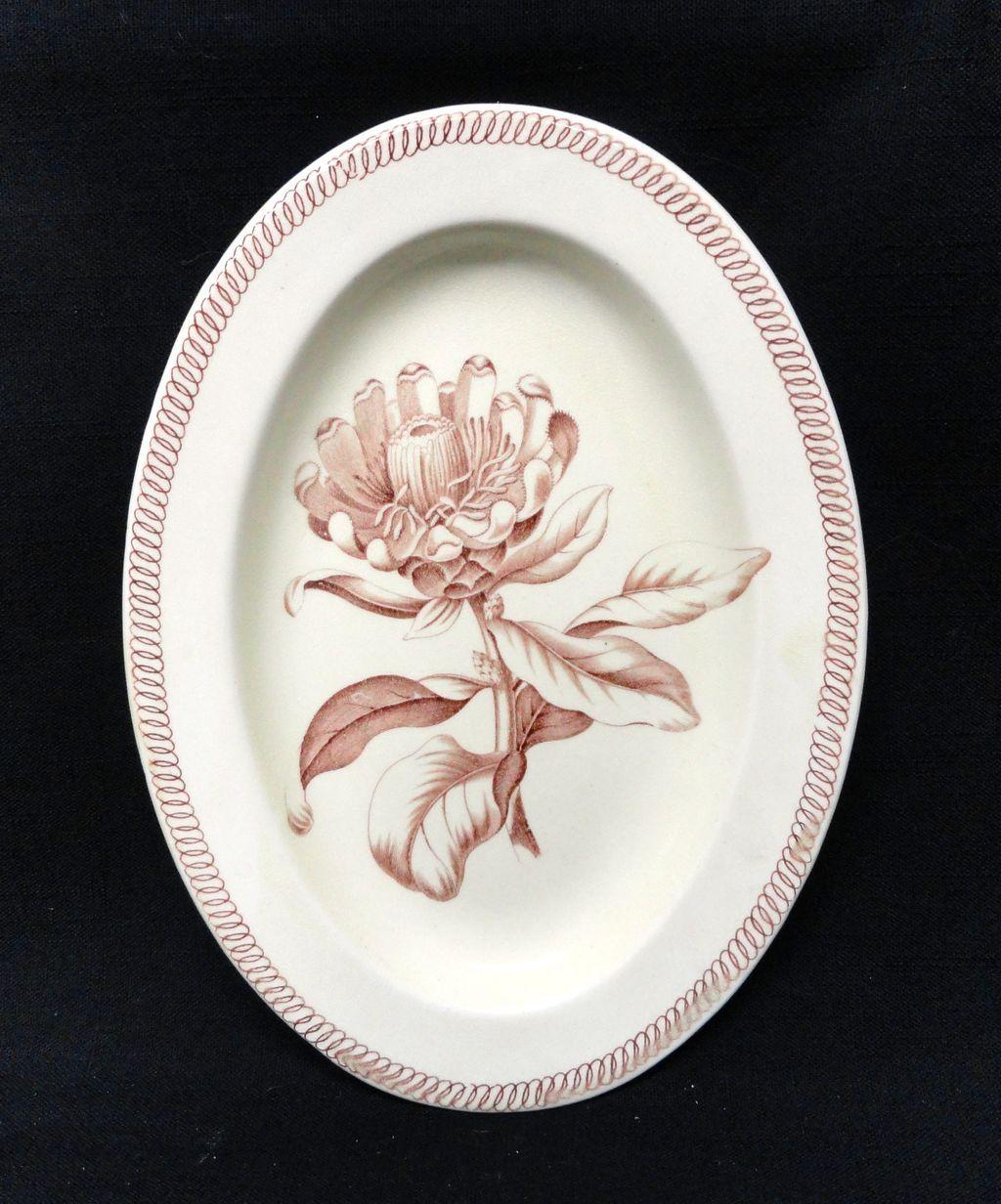 Wedgwood BOTANICAL Creamware Transferware Platter ~ 1878