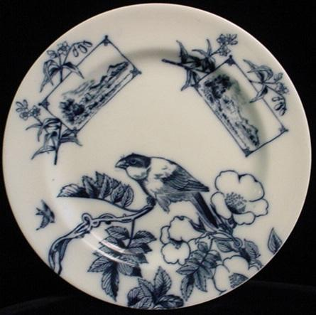 Flow Blue Aesthetic ORNITHOLOGY Plate ~ Birds 1870