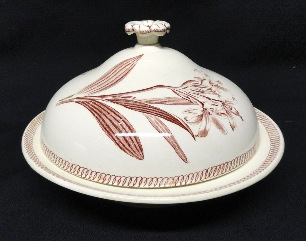 Wedgwood BOTANICAL Creamware Covered Muffineer 1878