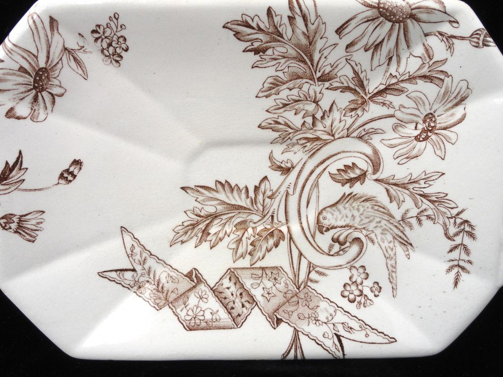 Brown Transferware Butter Condiment Platter ~ PARROT 1889