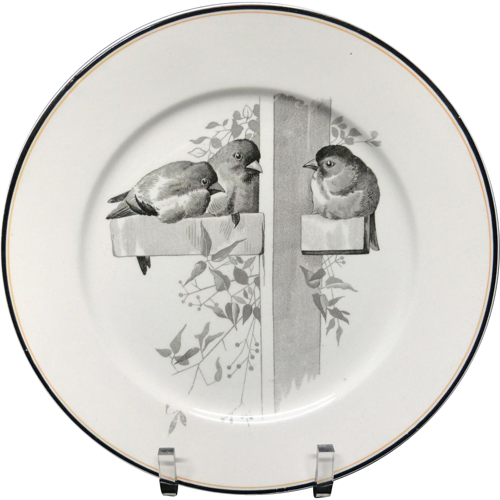 Pierre Mallet Brown Transferware ORNITHOLOGY Plate ~ 1870 #D