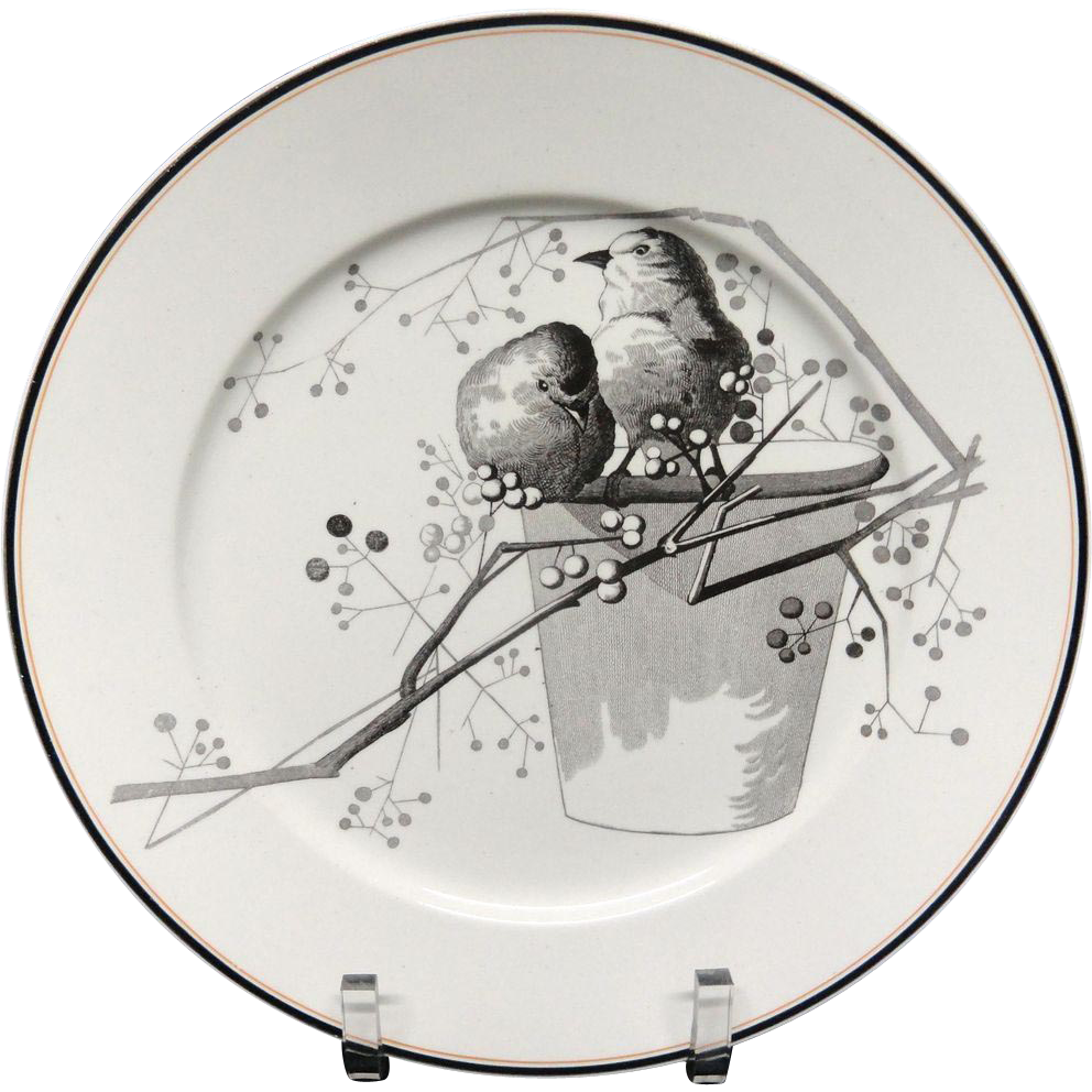 Pierre Mallet Brown Transferware ORNITHOLOGY Plate ~ 1870 #E