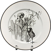 Pierre Mallet Brown Transferware ORNITHOLOGY Plate ~ 1870 #I