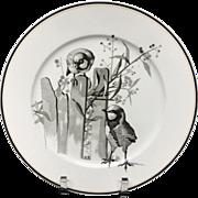 Pierre Mallet Brown Transferware ORNITHOLOGY Plate ~ 1870 #I