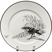 Pierre Mallet Brown Transferware ORNITHOLOGY Plate ~ 1870 #J