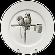 Pierre Mallet Brown Transferware ORNITHOLOGY Plate ~ 1870 #K