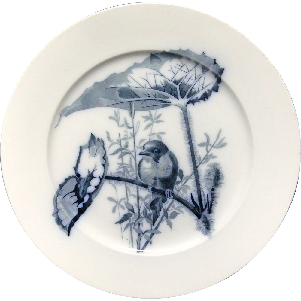 Pierre Mallet Blue Transferware ORNITHOLOGY Plate ~ 1870