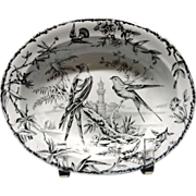 Black Transferware ~ Hawk + Hummingbirds ~ Server ~ Indus 1885