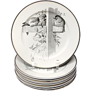 8 ~ Pierre Mallet Brown Transferware ORNITHOLOGY Plates ~ 1870