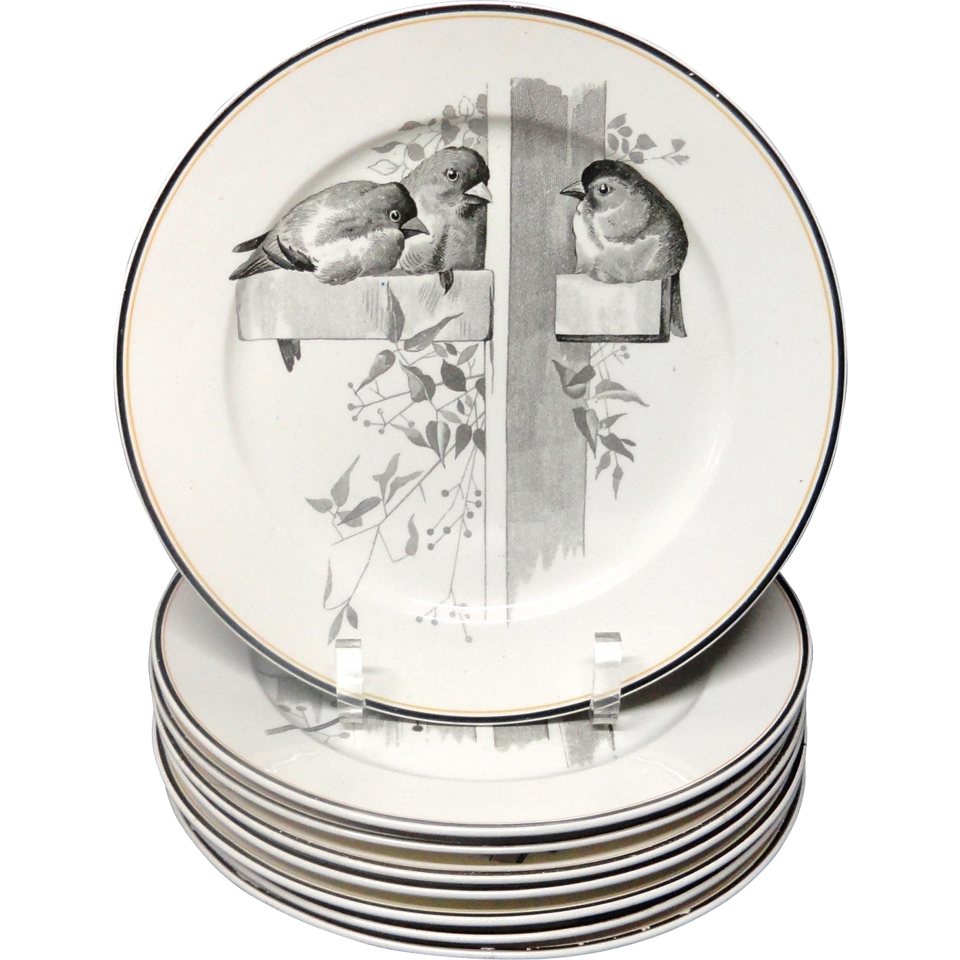 8 ~ Pierre Mallet Brown Transferware ORNITHOLOGY Plates ~ 1870
