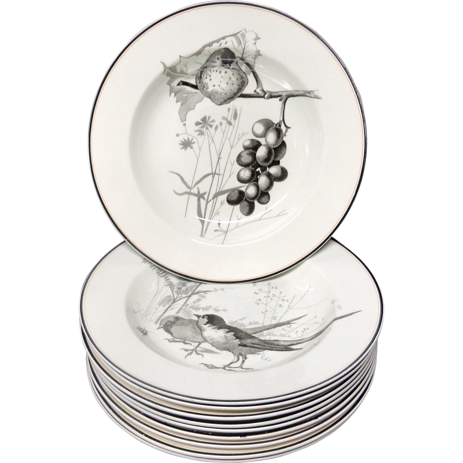 10 ~ Pierre Mallet Brown Transferware ORNITHOLOGY Soup Plates ~ 1870