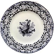 Victorian Ironstone SEAWEED Aesthetic Transferware Plate ~ SEASHELLS 1876