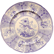 Outstanding Staffordshire Plate ~ Eastern Plants ~ 1830