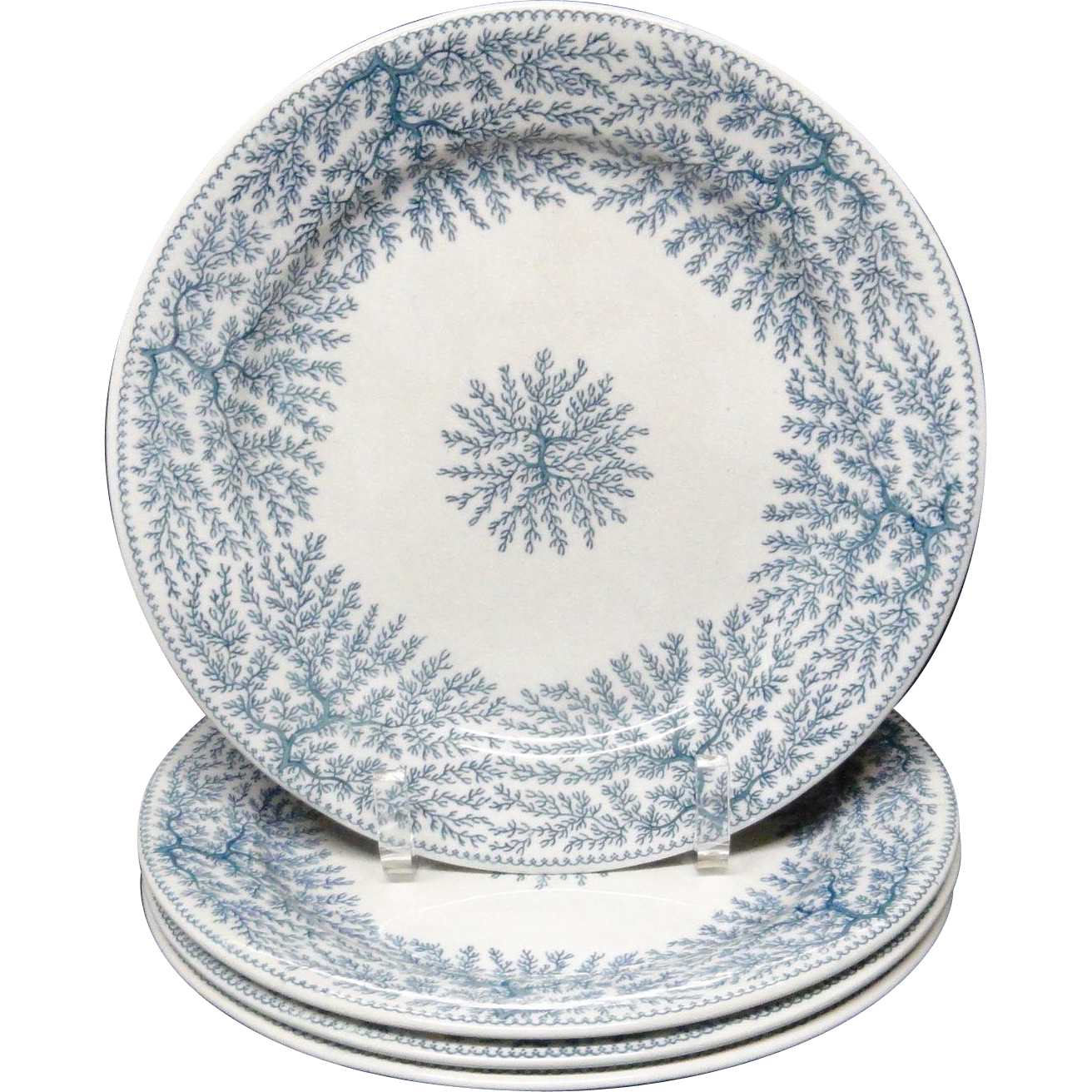 Four Victorian Blue Transferware ~ SEAWEED FIBRE Plates ~ 1884