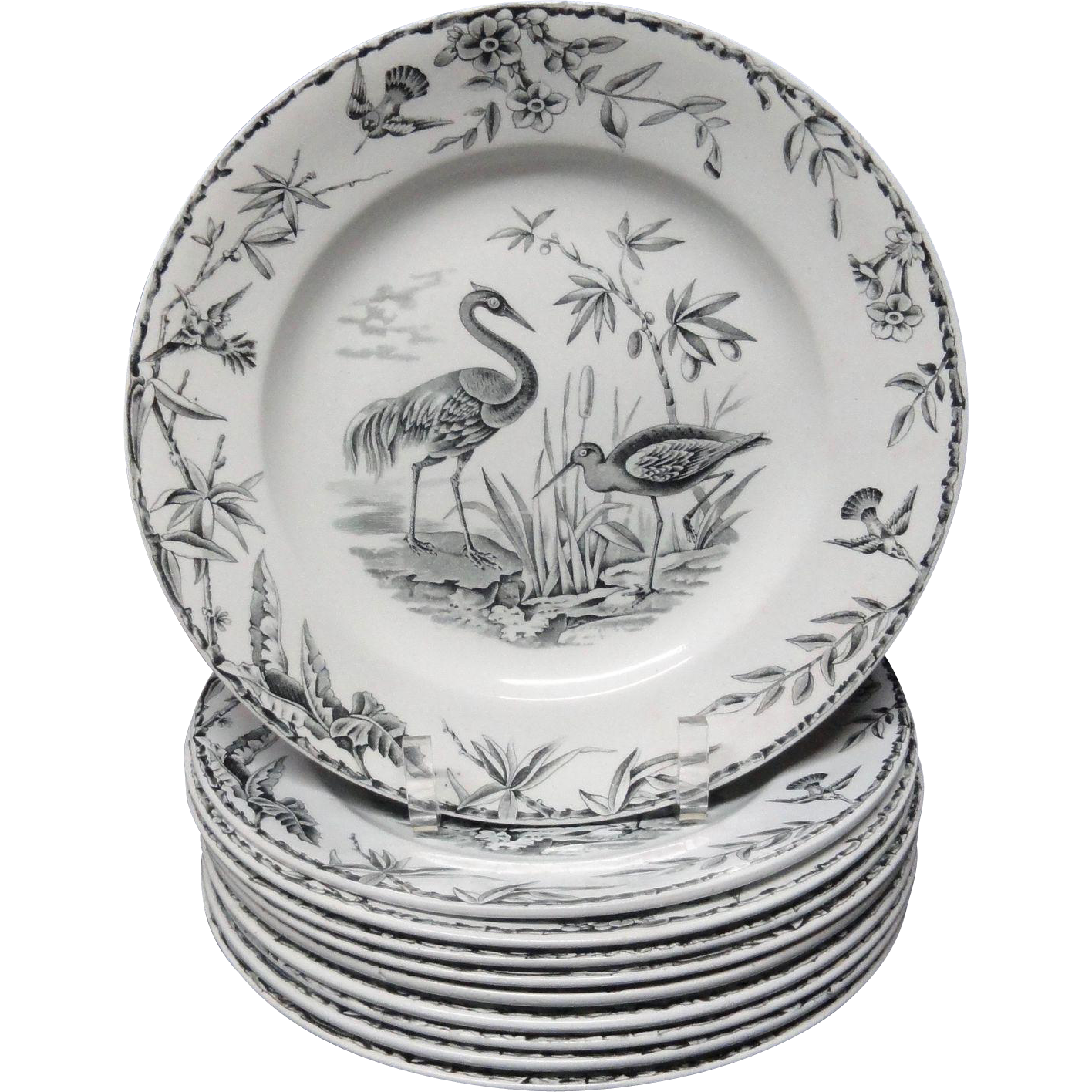 Ten INDUS Aesthetic Movement EXOTIC BIRDS Transferware Plates ~ 1885