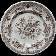 BROWN TRANSFERWARE Plate ~ ASIATIC PHEASANTS 1860
