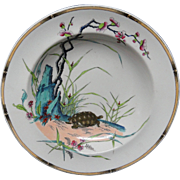 Aesthetic Polychrome Soup Plate ~ Rare Turtle 1882