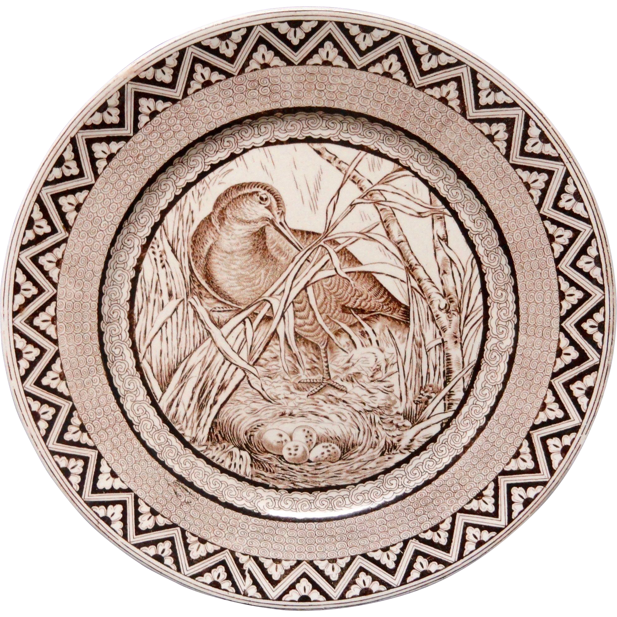 Brown Transferware Plate ~ Wood Duck with Eggs ~ 1885