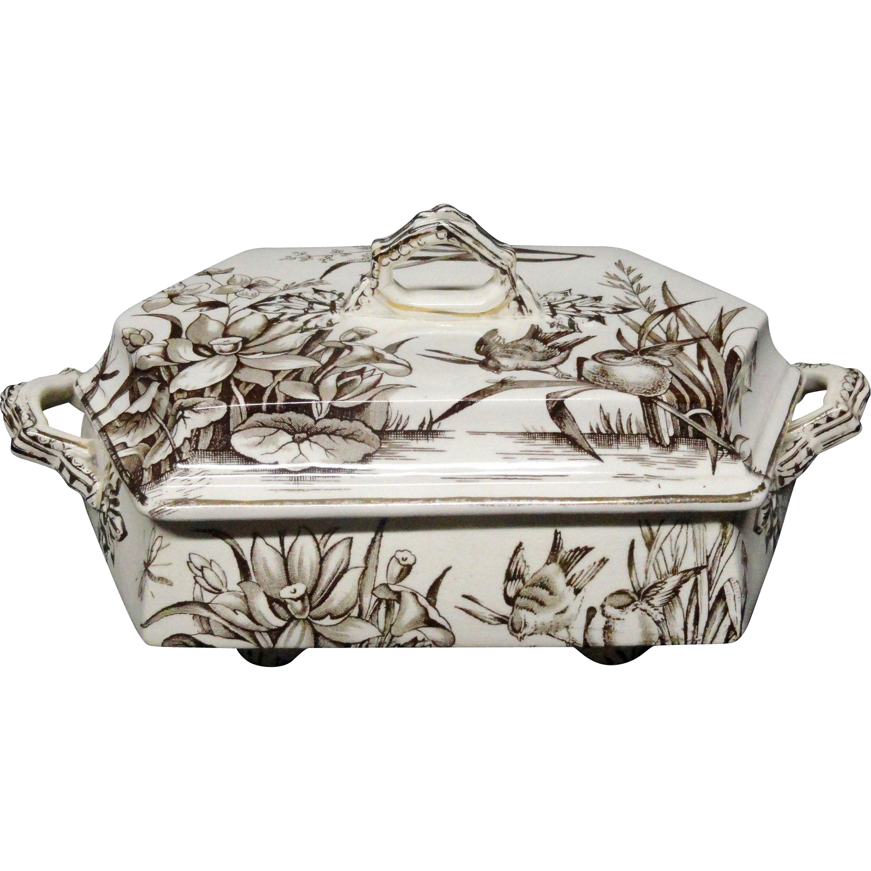 Large English Brown Transferware Aesthetic Movement Era Tureen~ AMAZON 1880