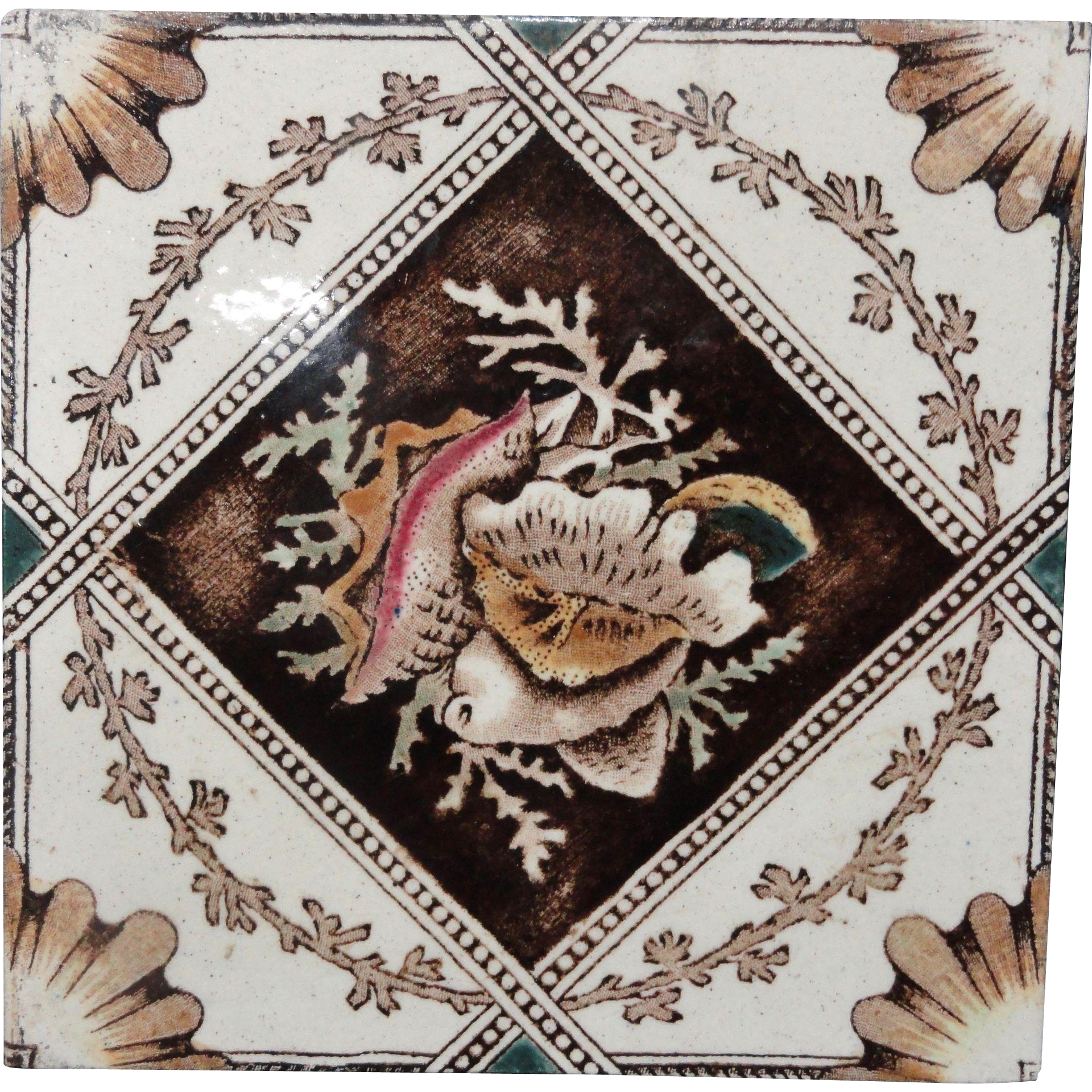 English Hand Colored Transferware Tile ~ SEASHELLS 1885