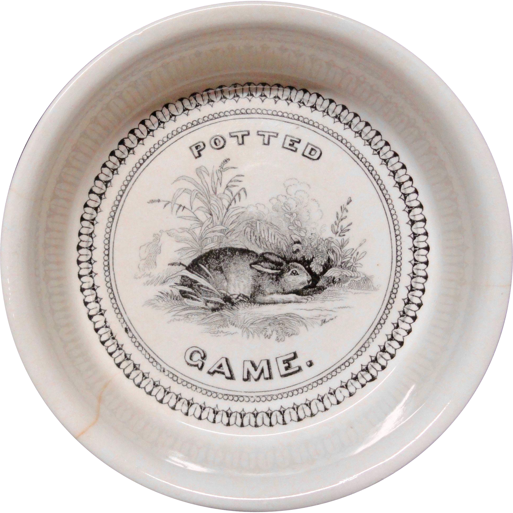 Potted Game ~ Rabbit ~ Black Transfer Printed Pot