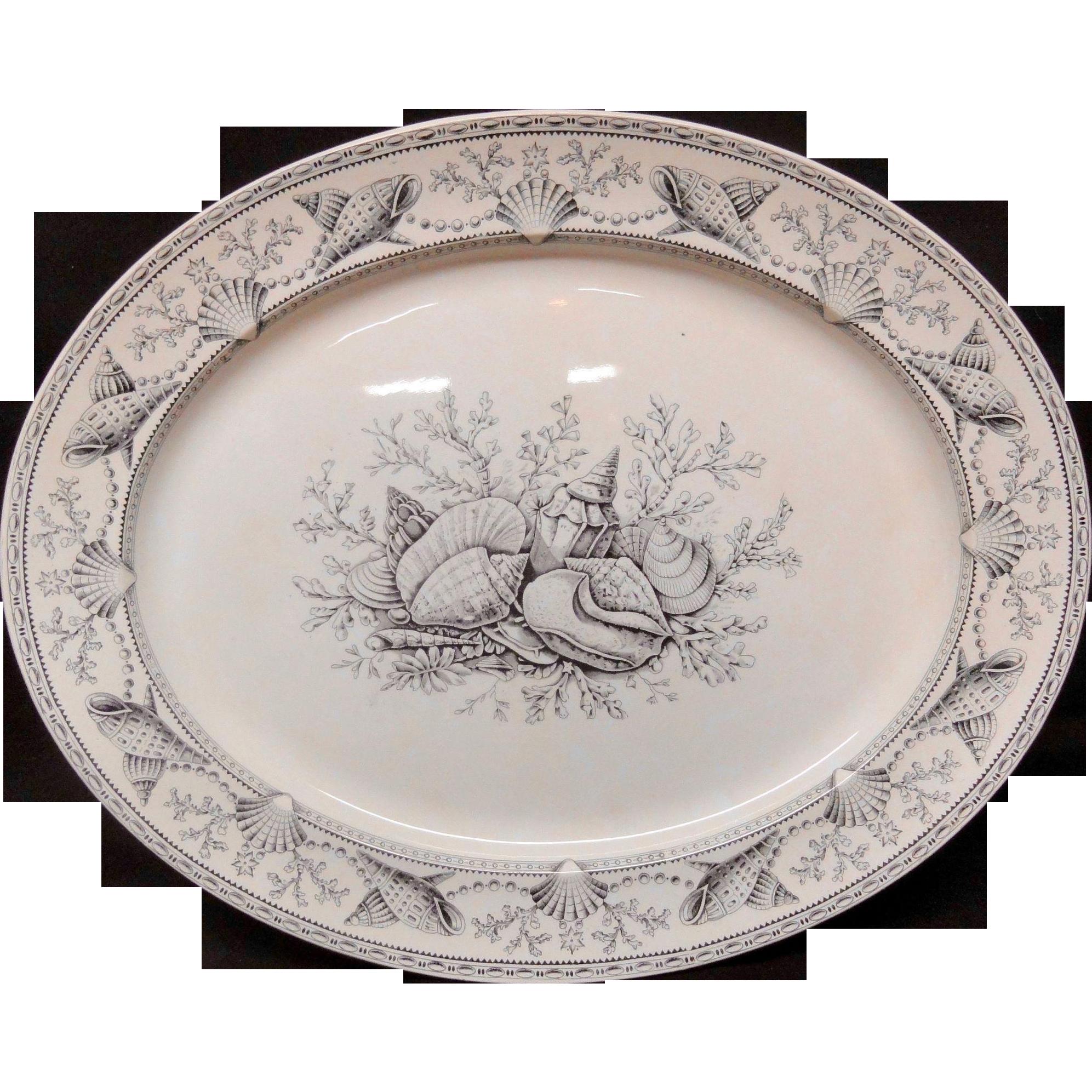 Black Transferware Clovelly NANTASKET Large Platter ~ Seaweed Seashells 1876