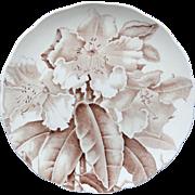 Magnolia Brown Transfer Printed Plate ~ 1885