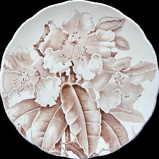 Magnolia Brown Transferware Printed Plate ~ 1885