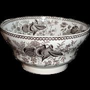 Rare Pearlware Transfer Printed Waste Bowl SEASHELLS Staffordshire England  c1835