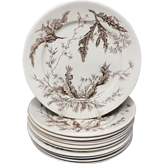 10~ Brown Wedgwood Staffordshire Dinner Plates ~ SEAWEED 1883
