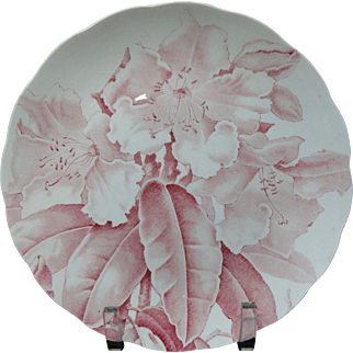 Red Pink English Victorian BWM Plate ~ ORCHIDS 1885