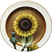 SUNFLOWER ~ Outstanding Artist Painted Cabinet Plate ~ 1879