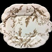 Brown Transferware Biscuit Cake Plate ~ SEAWEED 1883
