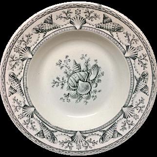 SEAWEED Dinner Seashells Soup Plate ~ Nantasket Lovely ~ 1876
