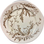 Brown Wedgwood Staffordshire Dinner Plate ~ SEAWEED 1883