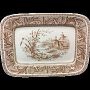 1882 ~ Large DAFFODIL Brown Transferware Platter Victorian English 1882