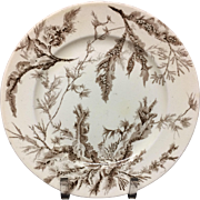 1883 ! Brown Wedgwood Staffordshire Supper Plate ~ SEAWEED