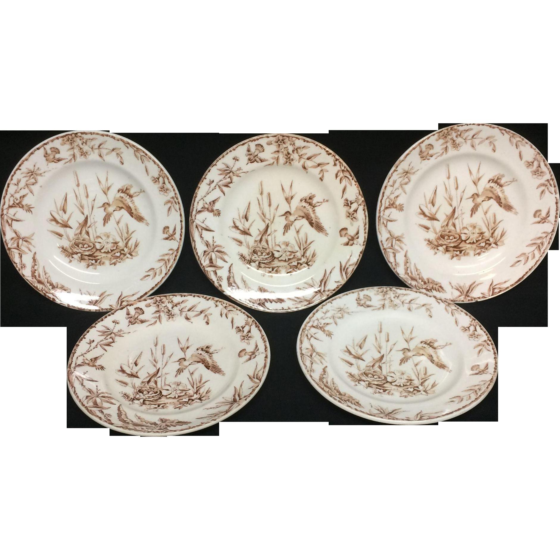 1885 ~ FIVE INDUS Exotic Birds Brown Transferware Plates
