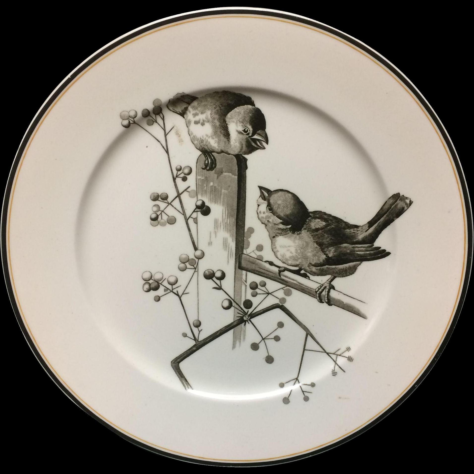 1870 ~ Pierre Mallet Brown Transferware ORNITHOLOGY Large Plate