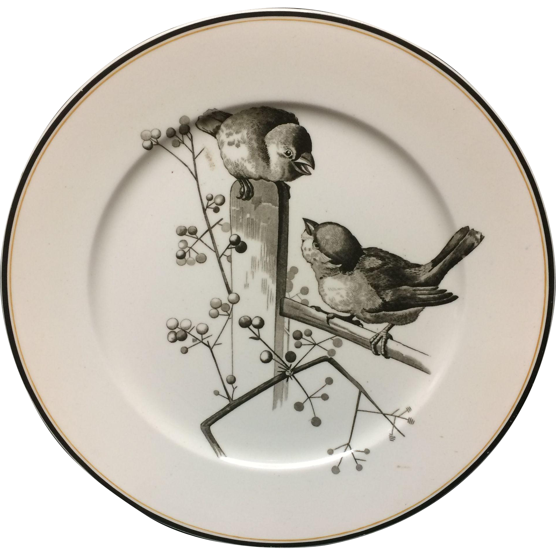 1870 ~ Pierre Mallet Brown Transferware ORNITHOLOGY Large Plate