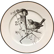 1870 ~ Pierre Mallet Brown Transferware ORNITHOLOGY Plate