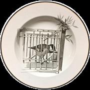 1870 ~ Pierre Mallet Brown Transferware ORNITHOLOGY Soup Plate