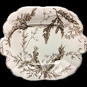 Wedgwood Brown Transferware Biscuit Cake Plate ~ SEAWEED 1883