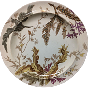 1883 ~ SEAWEED Brown Transferware Polychrome Wedgwood Plate A