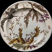 1883 ~ SEAWEED Brown Transferware Polychrome Wedgwood Plate B