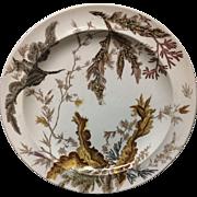 1883 ~ SEAWEED Brown Transferware Polychrome Wedgwood Plate C