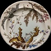1883 ~ SEAWEED Brown Transferware Polychrome Wedgwood Plate D