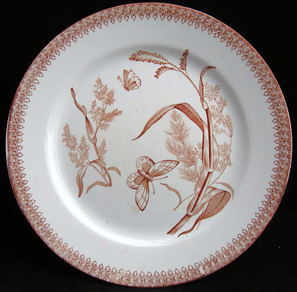 Brown Aesthetic BUTTERFLIES Plate 1890