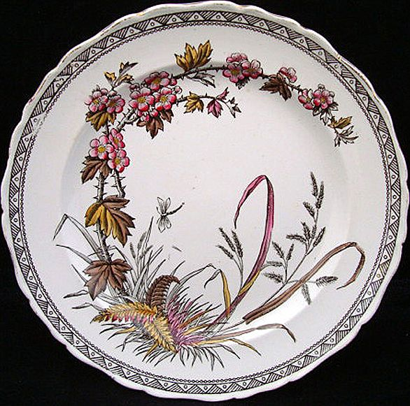 Antique Brown Polychrome Plates ~ Dragonfly 1883 ~